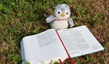 Reading Philippians