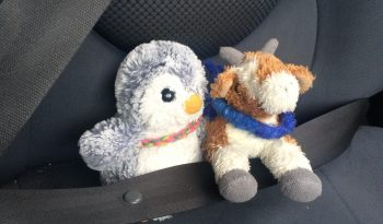 Arnold & Gertrude in seatbelt