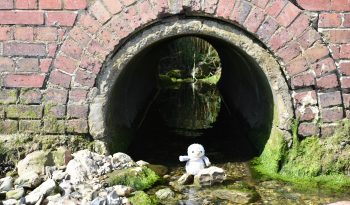 Arnold in a tunnel