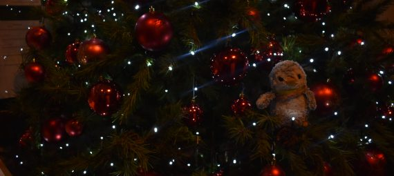 Arnold in a Christmas Tree
