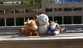 Bernard, Arnold and Gertrude