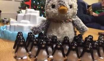 Arnold & little penguins