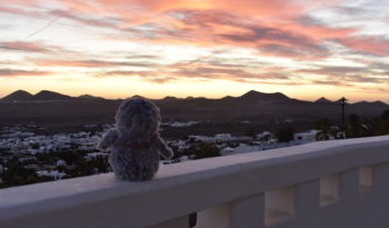 Arnold looking at the sunset