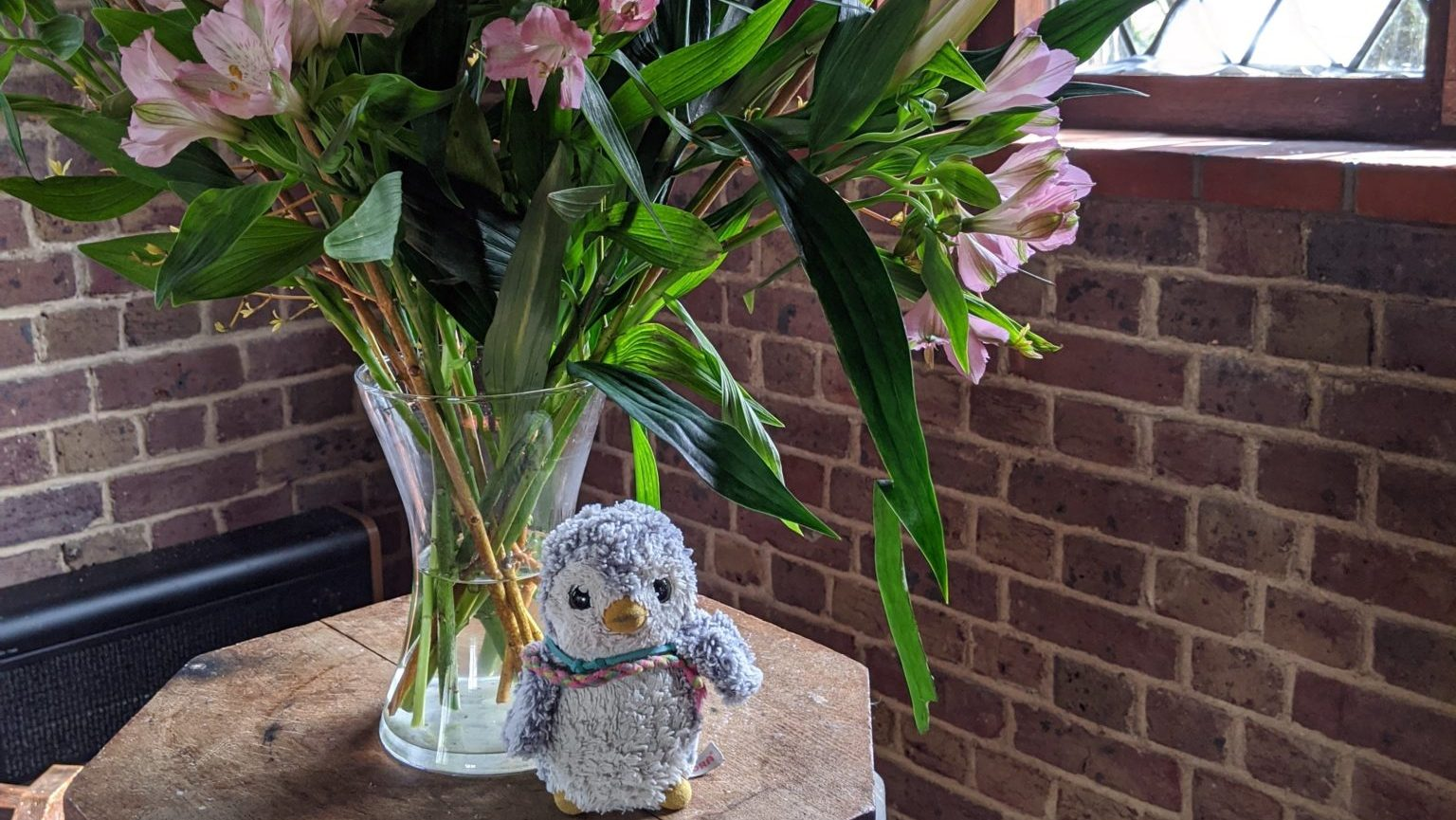 Arnold & flowers