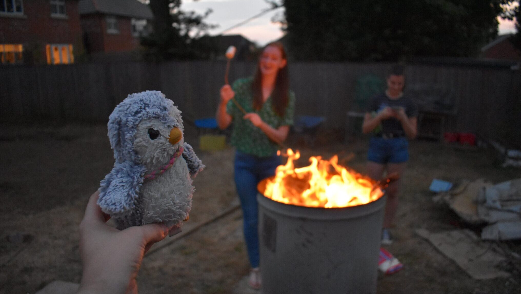 Arnold the penguin watching a bonfire