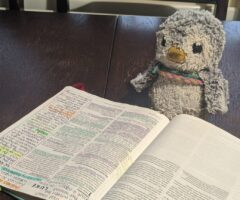 4 tips to improve your Bible study