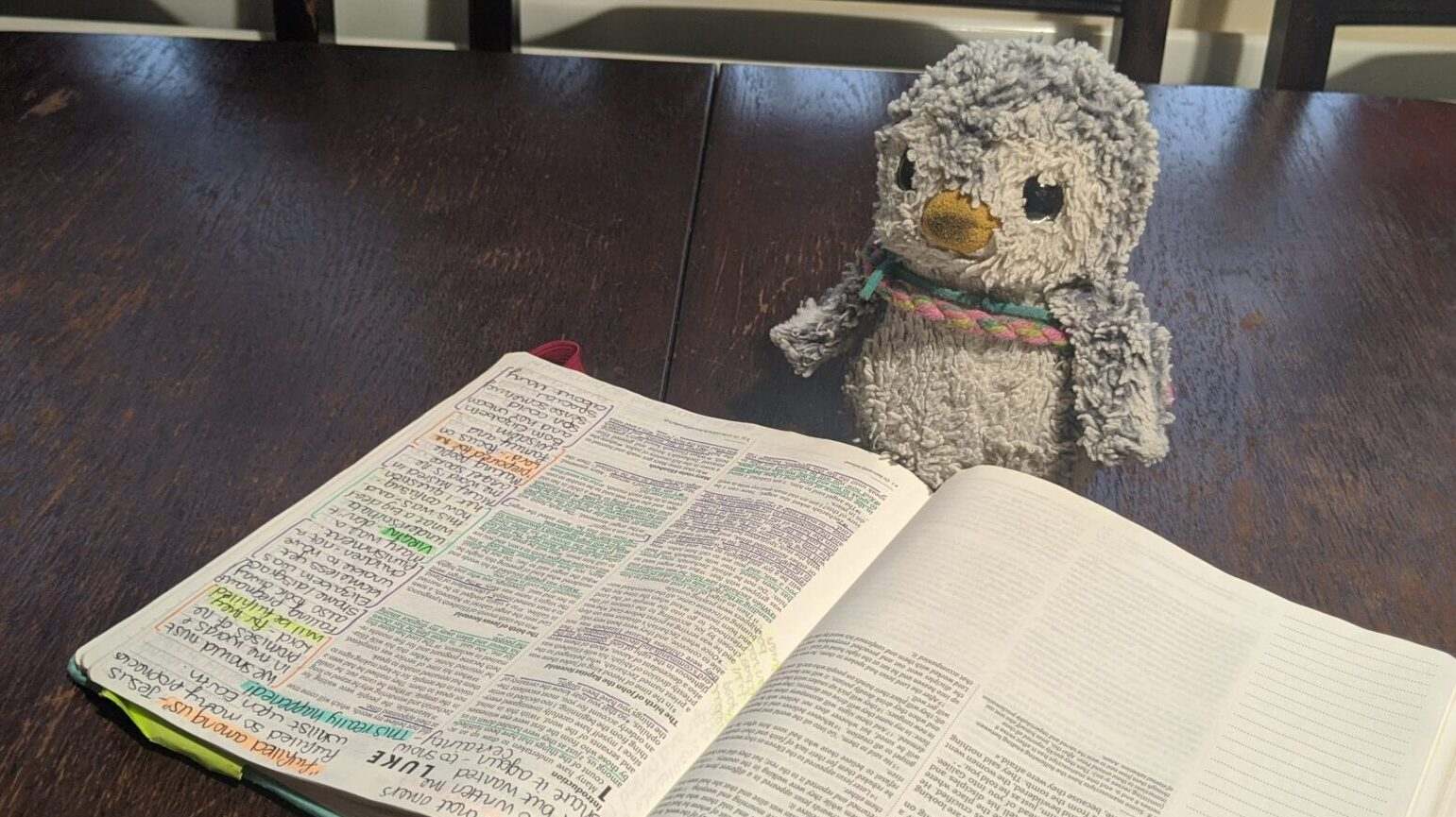 Arnold reading the Bible