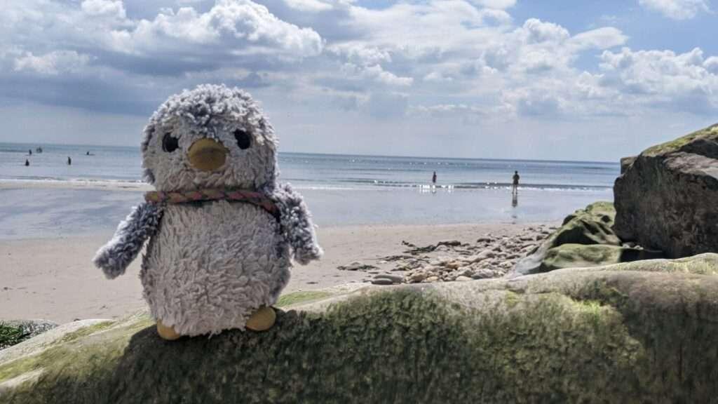 Arnold on the beach